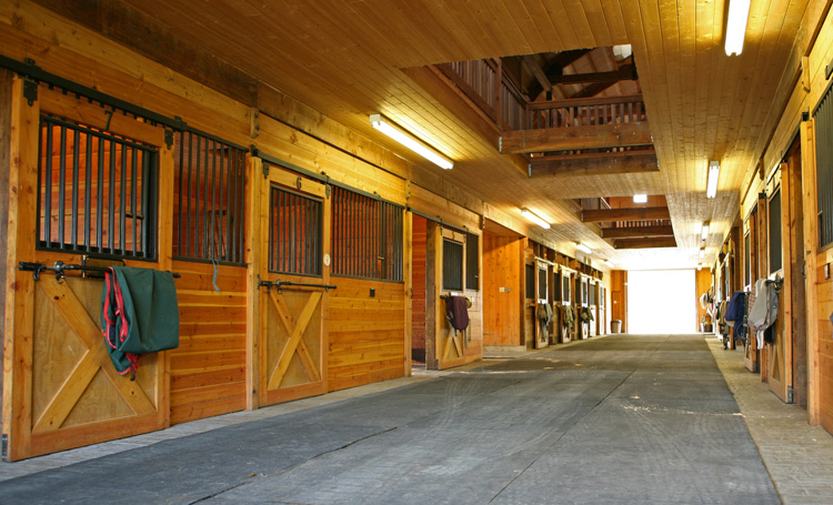 Barn Mosquito Amp Fly Misting Systems Gallery Pynamite Mosquito Misting Systems